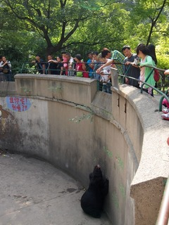 201309_zoo10.JPG