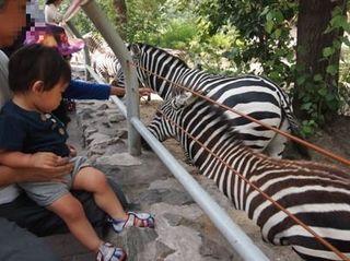 201309_zoo17.JPG
