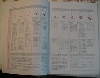 20110816_hahaoya12.JPG
