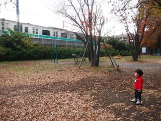 201412_gotamno1.JPG