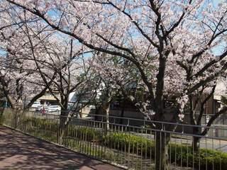 201504_edogawa06.JPG